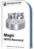 Magic NTFS Recovery 2.8 Commercial Edition Portable by TryRooM (x86-x64) (2019) Multi/Rus